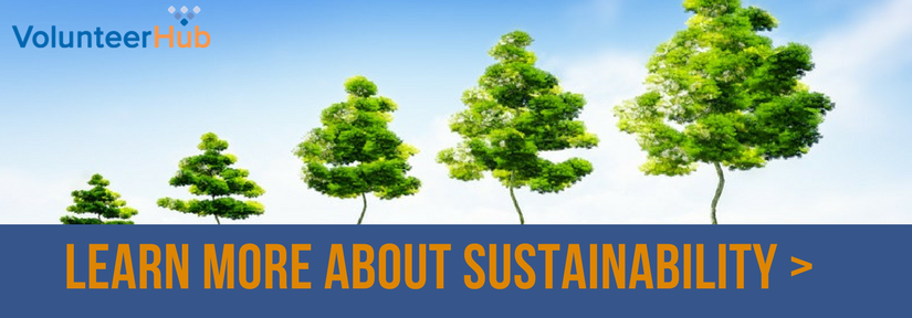 Learn more about large nonprofit sustainability